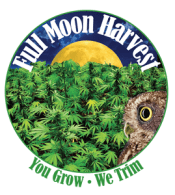 Full Moon Harvest